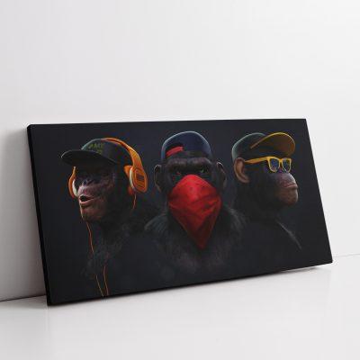 3 Wise Monkey's Canvas