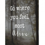 Quote Canvas 1 - Go Where you Feel Most Alive