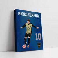 Personalised Design #2 - Canvas - Team Sementa